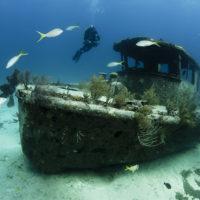 travenius-destination-bahamas-03