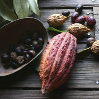 Cacao beans and nutmegs